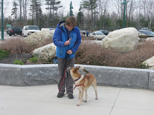 Maisey's dad has a soft tone, loose leash and is smart to tell her what she is doing right!